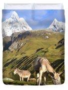 Donkeys Grazing In The Mountains Duvet Cover