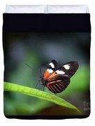 Doris Longwing Butterfly 2017 Duvet Cover