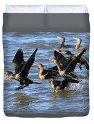 Double Crested Cormorants Duvet Cover