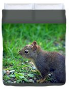 Douglas Squirrel  Duvet Cover