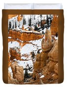 Down Into The Canyon Duvet Cover