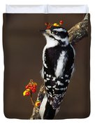 Downy Woodpecker On Tree Branch Duvet Cover