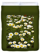 Dozens Of Daisies Duvet Cover