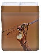 Dragonfly Beauty Duvet Cover
