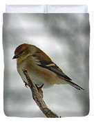 Dreaming Of Spring - American Goldfinch Duvet Cover