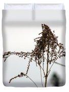 Dried Flower Duvet Cover
