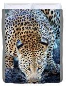 Drinking Leopard Duvet Cover