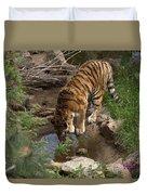 Drinking Tiger Duvet Cover