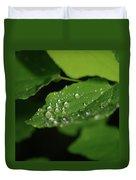Droplets On A Leaf  Duvet Cover