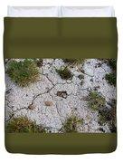 Dry Ground Duvet Cover