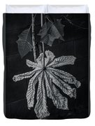 Dry Leaf Collection Bnw 2 Duvet Cover