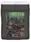 Dry River Bed- Autumn Duvet Cover