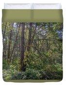 Dsc_0012 Web Duvet Cover