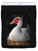Duck Duck Goose Duvet Cover