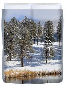 Duck Pond In Colorado Snow Duvet Cover