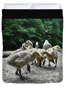 Ducklings Duvet Cover by Bill Cannon