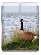 Ducks And Geese 2 Duvet Cover