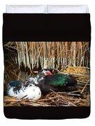 Ducks Duvet Cover