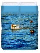 Ducks In Water Duvet Cover