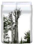 Duncan Memorial Big Cedar Tree - Olympic National Park Wa Duvet Cover