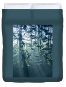 Dusk In Ashenvale IIi Duvet Cover