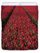 Dutch Tulips Second Shoot Of 2015 Part 1 Duvet Cover