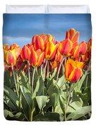 Dutch Tulips Second Shoot Of 2015 Part 3 Duvet Cover