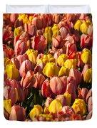 Dutch Tulips Second Shoot Of 2015 Part 9 Duvet Cover