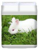 Dwarf White Bunny Spring Scene Duvet Cover