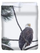 Eagle In A Pine Tree Duvet Cover