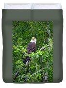 Eagle In Tree Duvet Cover