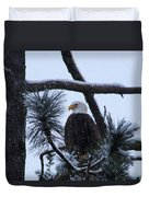 Eagle On A Frosted Limb Duvet Cover