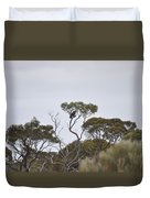 Eagle On The Nullarbor  Duvet Cover