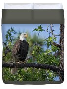 Eagle Series 13 Duvet Cover