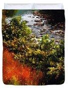 Early Autumn Along The Naugatuck Duvet Cover