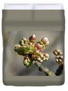 Early Cherry Blossom Duvet Cover