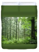 Early Morning In Swiss Forest Duvet Cover
