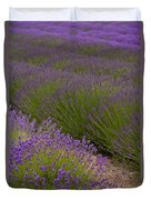 Early Morning Lavender Duvet Cover