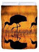 Early Morning Sandhill Cranes Duvet Cover