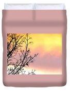 Early Spring Sunset Duvet Cover