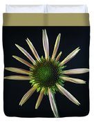Early Stage Of Cone Flower Bloom Duvet Cover
