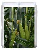 Ears Of Corn Duvet Cover