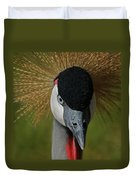 East African Crowned Crane Upclose Duvet Cover