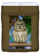 Eastern Barred Owl Duvet Cover