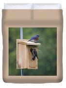 Western Blue Bird Duvet Cover