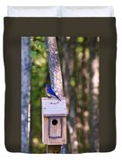 Eastern Bluebird Perched On Birdhouse 2 Duvet Cover