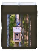 Eastern Bluebird Perched On Birdhouse 3 Duvet Cover