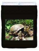 Eastern Box Turtle Duvet Cover