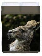 Eastern Grey Kangaroo Duvet Cover