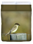 Eastern Phoebe At Falcon State Park Of Texas Duvet Cover